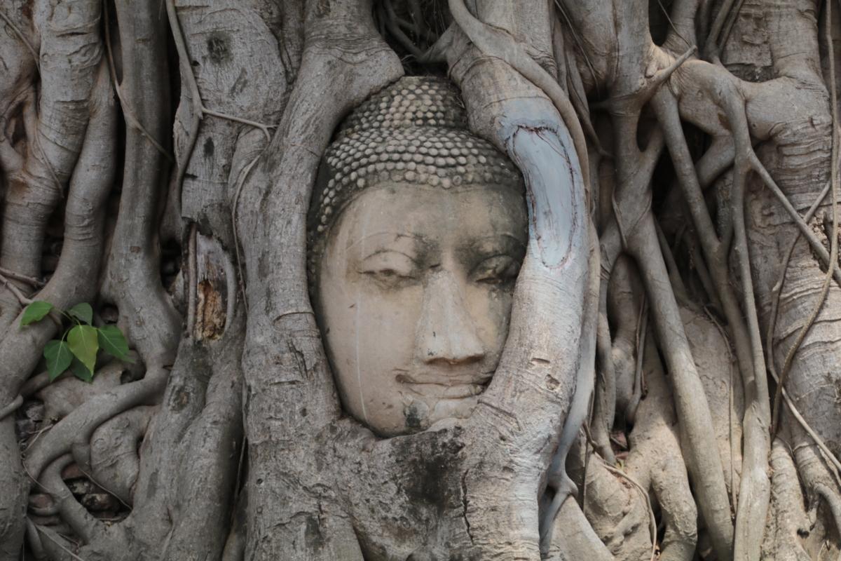 Ayutthaya- die Stadt der geköpften Buddhas