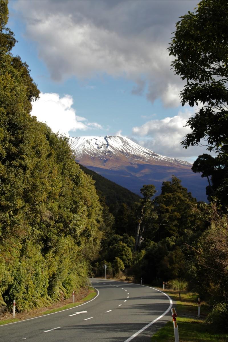 Endlich angekommen im atemberaubenden Tongariro Nationalpark!